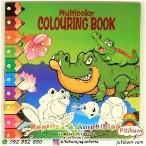 Libro para colorear, con guía de números y 50 pegotines de regalo!